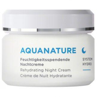 Annemarie Börlind Aquanature niisutav öökreem